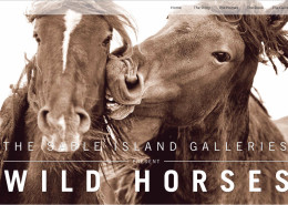 Sable Island Gallery
